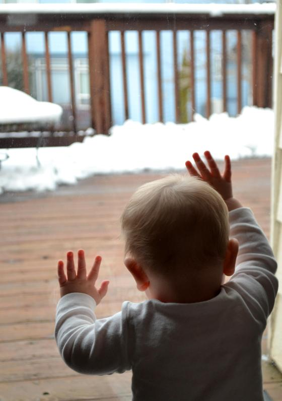 and a shot of Lincoln checking out the snow...
